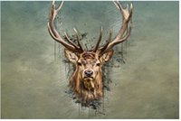 animal trophy heads - new x75cm poster wall sticker custom Deer Head Trophy poster for home decorate accept any picture