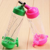 auto dog bowl - 80ML Plastic Hamster Water Bottle Holder Dispenser Hanging Pet Cat Dog Bowl Auto Drinking Head Pipe Fountains Water Feeder PC