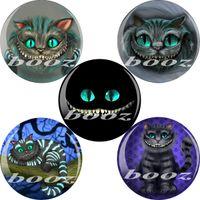 Alloy ae design - eval cat design ear plugs body jewellery piercing acrylic ear plug tunnel gauges mm AE