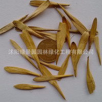 ash promotional - Selling new harvest fast growing seeds Ash seeds Ash ash seed germination cash on delivery cheap promotional package
