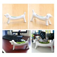 Wholesale Miser Dog Aerobic Planting Creative DIY Pot Plant Home Decor beside Computer order lt no track