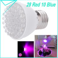 Wholesale EU US Plug Newest w E27 red blue LED Bulbs For Flowering Plant and Hydroponic System Cheapest Led Grow Light L0101