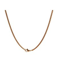 Wholesale Rose gold stainless steel chain for floating lockets and pendants cm Fit All Brands Living Memory Lockets