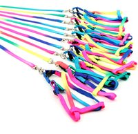 basic hand - Dog Rainbow straps Pet Products Hauling Cable Leads Collars Dog Traction Belt Dog Traction Rope Running Dog Leash Hands CM