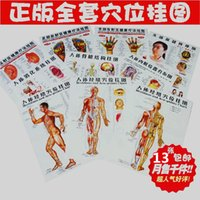 acupuncture point map - 2015 Body acupuncture points chart human meridian map human gut map human skeletal figure body digest map head eyes ears foot ma
