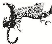 Wholesale Hot Sale Animal Leopard Stickers For Creative Personality Decorative Vinyl Wall Stickers Wall Stickers Home Decor