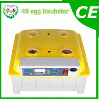 Wholesale Egg incubator temperature humidity controller JN8 eggs incubator A