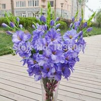 art direction - Single simulation colors silk artificial plant orchid flower arranging art for sitting room adornment direction TH016
