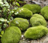 Wholesale FD2192 New Stone Moss Miniature Dollouse Garden Craft Fairy Bonsai Plant Decor pc