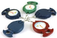 Wholesale Scale Portable Fish Style kg Kitchen Spring Scale for Household