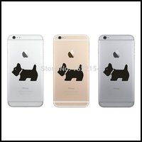Cheap sticker for mobile phone Best stickers coin