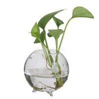 Wholesale SUNTEK Glass Flower Hydroponic Vase Micro Landscape DIY Bottle Terrarium Container container water container landscaping