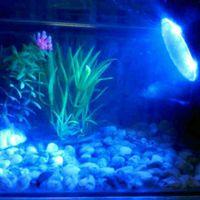 Wholesale Underwater LEDs W V Waterproof IP68 Submersible Spot Lights RGB for Aquarium Garden Pond Pool Tank LED Lighting