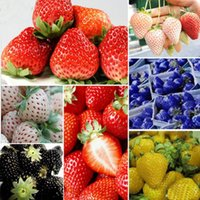 Cheap 100PCS Bag Multi-color Strawberry Seeds Nutritious Delicious Fruit Seed Novelty Plants For Home And Garden Plant