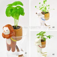 Wholesale New Mini Desktop Doll Animal Tail Absorbent Potted Plant Grass Suction Pot T0611 W