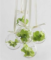 Wholesale 2pcs Glass Hanging Flower Vases Dia cm Round with an Opening Round Bottom for Planting Decorating