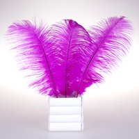 Wholesale Pretty Natural Rose Ostrich Feathers inch Long Wedding Birthday Christmas Decorations