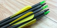 Wholesale carbon hunting and archery arrow for compound bow use and with insert screwed GR arrow tips and plastic fletching