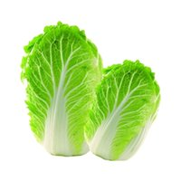 Wholesale New Hot Delicious Chinese Cabbage Seeds Organic Heirloom Vegetables Garden Supplies Interest
