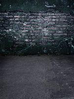 baby plasters - 600CM CM fundo Cement plaster peeling3D baby photography backdrop background LK