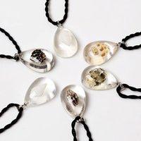 amber sea - Hot Sale Shell Lucite Amber Necklace Drop shape Pendants Sea Marine Accessories Charm Jewelry Color Random NL