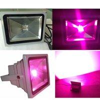 Wholesale 48W High Power COB LED Grow Light for Plant
