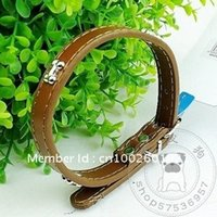 Wholesale XQ10 pet dog collar bone pattern multicolor dog collar dog into the ring cat ring