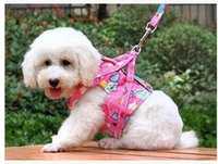 dog collars and leashes - New dog harnesses lovely nylon dog collar leashes Adjustable Dog Cat harness beautiful pet collars good quality harness and leashes N19