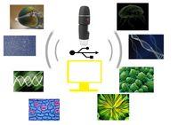 2pcs / lot 50-500X 2MP USB 8 LEDs Electrónica Digital Microscopio Inspección Cámara Lupa con soporte de metal EGS_146