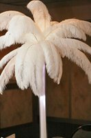 Wholesale 50pcs cm White color ostrich feathers plumage for wedding home party table centerpieces decoration bulk sale
