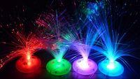 Indoor Christmas Decoration fiber optic flowers - 8 modes LED fiber optic flower roses Colorful holiday optical fiber lamp small night light Christmas tree gift