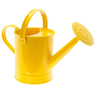 Wholesale High Quality water can garden deco Zinc Flower Planter Pot Watering can