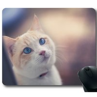Wholesale Pet Mouse Pad for Computer and Notebook Rubber Material