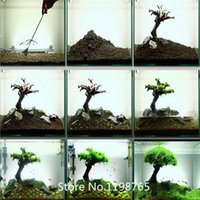 Wholesale 2015 Hot Hot selling aquarium grass seeds mix water aquatic plant seeds kinds family easy plant gras