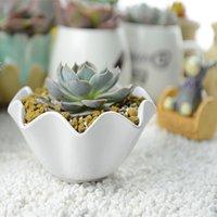 Wholesale 1 Lotus Design Flower Plant Pots Gardening Plastics Planter x5 x4 cm Home Desktop decorative plant stands
