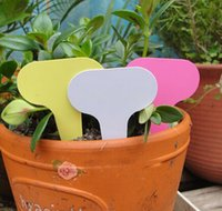 Wholesale 100 x10cm Plastic Plant T type Tags Markers Nursery Garden Labels Gray
