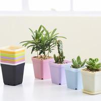square vase - Newest Bonsai Planters Plastic Table Mini Succulents Plant Plate Gardening Vase Square Flower Pot Colorful