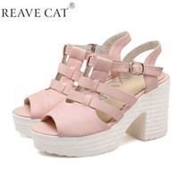 ankle trap - 2015 New arrival Women Sandals High heels Platform T trap Buckle Peep toe Blue White Pink Fashion Casual PU Rubber Hot sale