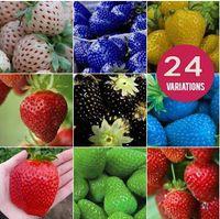 Wholesale 30 OFF Fruit seeds strawberry seeds DIY Garden fruit seeds potted plants kinds strawberry seeds