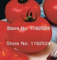 beef tomato - 100 SEEDS Big Beef F1 Tomato Seeds fruit vegetables seeds