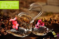 Wholesale 2 Pair glass swan planter terraium Home Decor set of beautiful Art Glass Vases Lover s Gift Flower decoration