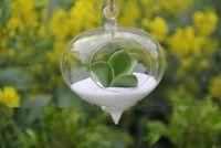 clear glass ornaments - Hanging onion glass terrarium indoor plant terrarium garden air plant holder for house ornament home decoration