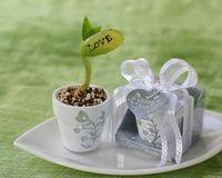 corporate gift - Novel Corporate wedding gift Love Magic Bean set Very Good for Wedding Favors