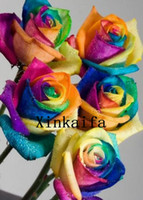 Wholesale New Arrival Rainbow Rose Seeds Colorful Petals Flower Seeds Seeds Per Package High Germination Rate Garden Accs Global