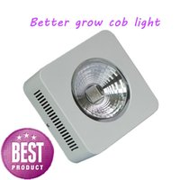 Wholesale New Apollo W LED plant Grow Light COB Chip For Hydroponic Systems and farm planting