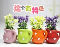 Wholesale Children s toys toy factory direct Mini simulation potted plants can export every family toy