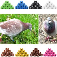 Wholesale Top Sale Multi color Plastic Fowl Leg Bands Bird Parrot Chicks Poultry Leg Clip Rings mm Numbered