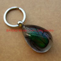 amber beetle - Real Green Chafer Beetle In Clear Resin Amber TearDrop keychains mm Birthday Gift Boy present High Quality
