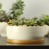 bamboo plant pots - Modern Style Decorative White Round Ceramic Crafts Succulent Planter Flower Mini Pot with Bamboo Tray EB DJ15611