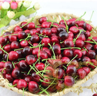 Wholesale Free ship160pcs high simulation model of cherries photography photo samples adornment still life painting studio props toys